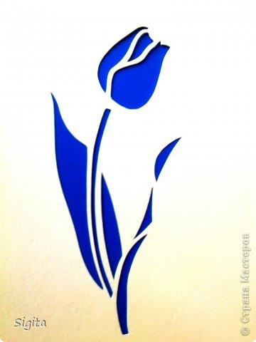 Тюльпан. Копия. фото 1