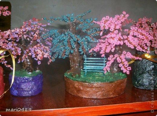 Здравствуйте дорогие мастера и мастерицы! Выставляю на показ свои деревья!!!! фото 1