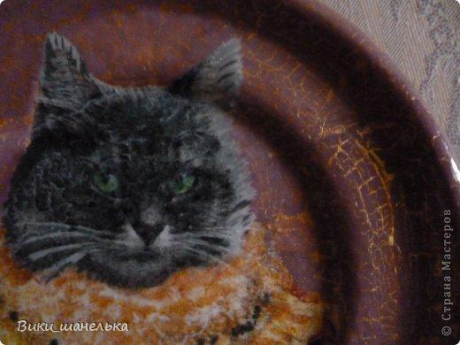 К 8 Марта сделала подруге вот таких котиков. Кошечка мне самой понравилась. Прямо Леди!!! фото 4