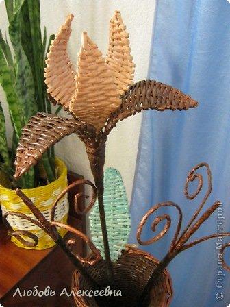 Мсем доброго времени суток,дорогие мои,я к вам с новым моим творением,уж очень понравилось плести напольные вазы,для декора лучше не придумаешь(пока для меня),ведь я еще учусь. фото 7