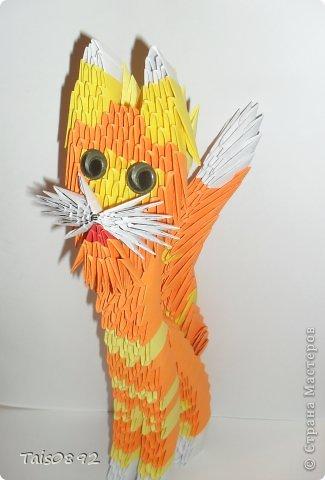"""Здравствуйте! Это  кот Тимофей! Мы с ним очень хотим поучавствовать в задании """"Коты неземной красоты"""" http://s55.radikal.ru/i150/1105/54/0db7af887ce3.gif http://homyachok-scrap-challenge.blogspot.com/2013/03/cats.html фото 1"""