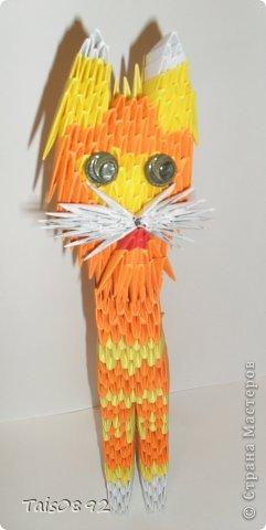 """Здравствуйте! Это  кот Тимофей! Мы с ним очень хотим поучавствовать в задании """"Коты неземной красоты"""" http://s55.radikal.ru/i150/1105/54/0db7af887ce3.gif http://homyachok-scrap-challenge.blogspot.com/2013/03/cats.html фото 2"""