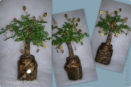 заказали денежное дерево, идею взяла из страны мастеров,вид с разных сторон. как Вам мои дорогие оцените пожалуйста.