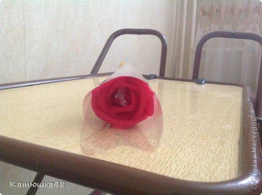 Отличный подарок на любой праздник-цветы... фото 4