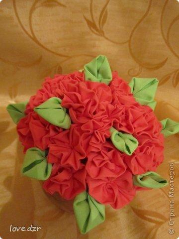 Цветы в горшке фото 3