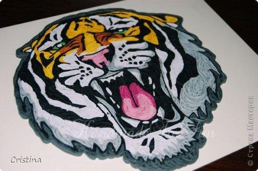 Tigre ready for be framed фото 1