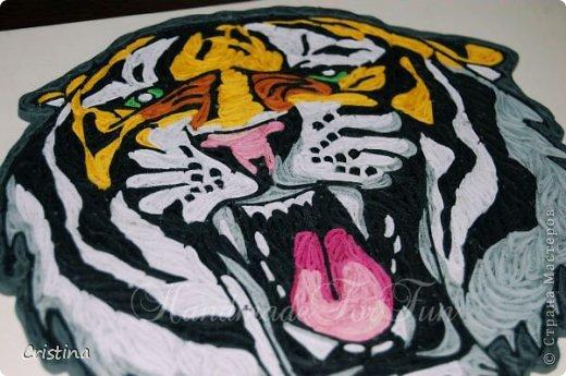 Tigre ready for be framed фото 3
