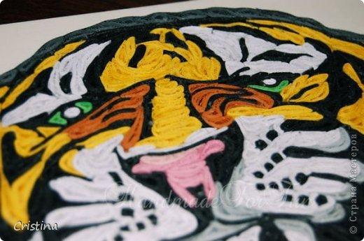 Tigre ready for be framed фото 4