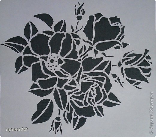 роза! фото 5