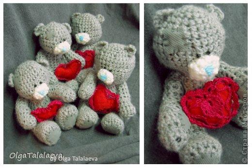 милые мишки фото 1