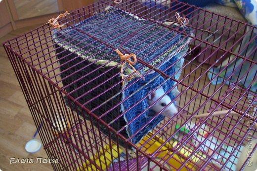 Здравствуйте это Настя!Это мои питомцы.Такая у них была клетка . Крыски очень любят норки , поэтому я решила сделать  им гамак и домики. фото 9
