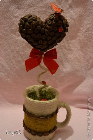 Мои кофейные деревья! фото 3