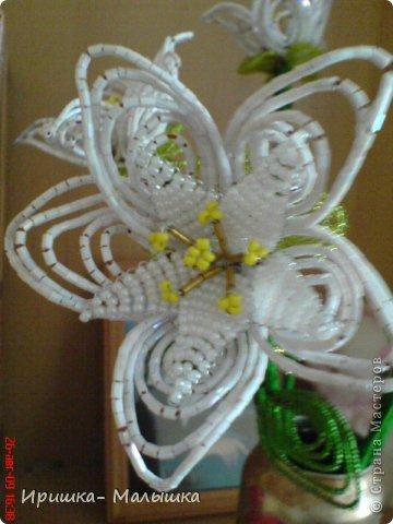 Понравилась мне техника плетения этих непонятных- чудо цветочков- решила продолжить... Жаль, что вазочки подходящей не было- пришлось чуток изменить пивную банку.... фото 5