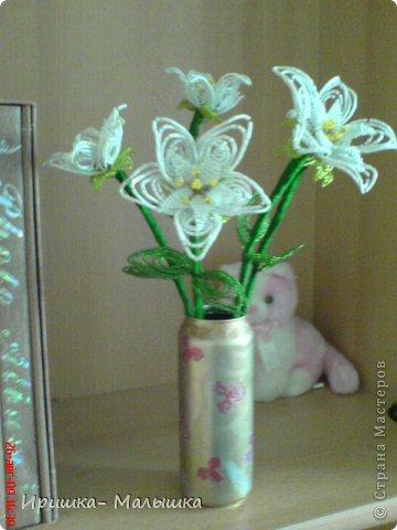 Понравилась мне техника плетения этих непонятных- чудо цветочков- решила продолжить... Жаль, что вазочки подходящей не было- пришлось чуток изменить пивную банку.... фото 6