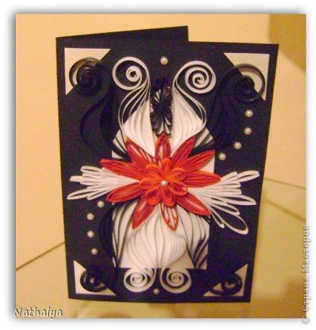 new card фото 2