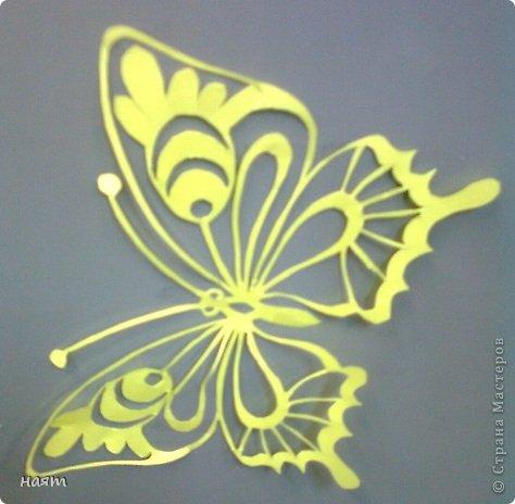 Поделка изделие Вырезание Бабочки + 1 кот Бумага фото 2