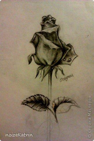 """Эскиз для татуировки с подписью """"This will pass"""", что в переводе с английского означает: """"Это пройдет"""".  Материалы: Обычный лист из блокнота и капиллярная ручка, линер фото 3"""
