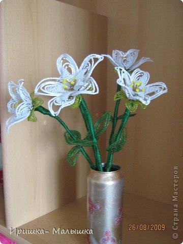 Понравилась мне техника плетения этих непонятных- чудо цветочков- решила продолжить... Жаль, что вазочки подходящей не было- пришлось чуток изменить пивную банку.... фото 3