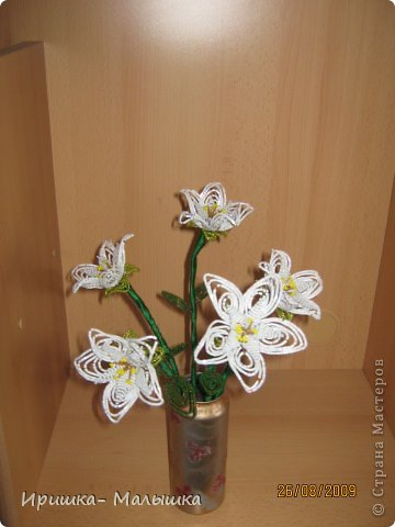 Понравилась мне техника плетения этих непонятных- чудо цветочков- решила продолжить... Жаль, что вазочки подходящей не было- пришлось чуток изменить пивную банку.... фото 2