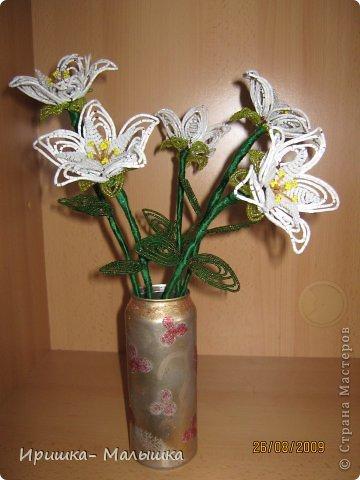 Понравилась мне техника плетения этих непонятных- чудо цветочков- решила продолжить... Жаль, что вазочки подходящей не было- пришлось чуток изменить пивную банку.... фото 1