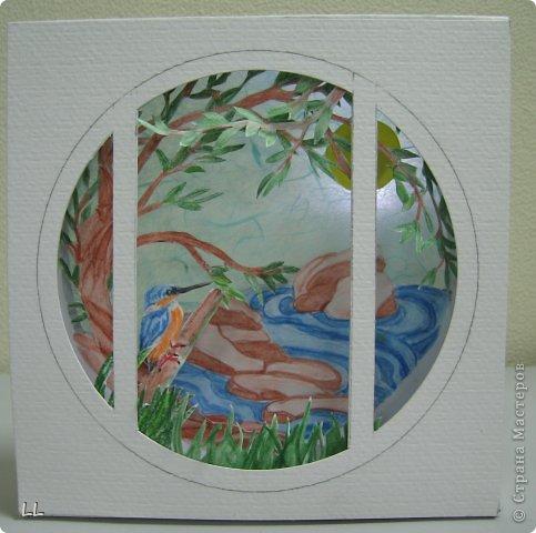 окно в природу фото 1