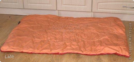 Вот такую подушку-циновку-коврик захотелось мне сшить в новое помещение нашего ансамбля. Объясняю по порядку. Я занимаюсь индийскими танцами и долгое время наш ансамбль мотался из помещения в помещение по всему городу. И вот наконец-то у нас свое помещение! Целиком и полностью свое! Ура-ура! фото 2