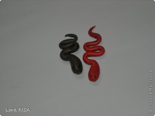 мои змейки фото 3