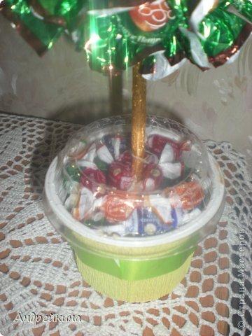 Решила я себя попробовать в изготовлении конфетных деревьев. Да и случай представился -8  марта. Как всегда времени было в обрез, но вроде бы получилось ничего себе так. фото 3