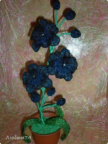 Добрый день, Всем Мастерицам нашей замечательной Страны!!! Долго я собиралась сделать Орхидею,спасибо Елене Балбекиной, она меня с подвигла на это. Говорила,как хочется ей иметь Черную орхидею. фото 2
