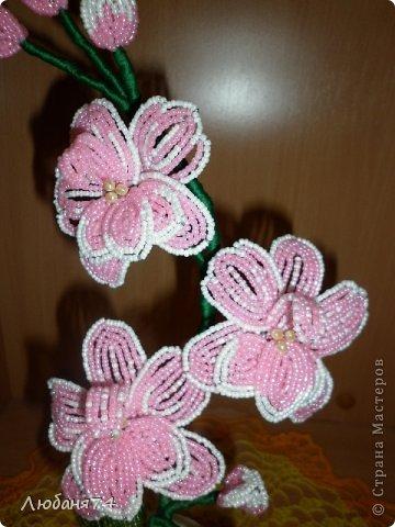 Добрый день, Всем Мастерицам нашей замечательной Страны!!! Долго я собиралась сделать Орхидею,спасибо Елене Балбекиной, она меня с подвигла на это. Говорила,как хочется ей иметь Черную орхидею. фото 5