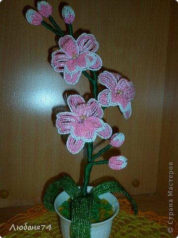 Добрый день, Всем Мастерицам нашей замечательной Страны!!! Долго я собиралась сделать Орхидею,спасибо Елене Балбекиной, она меня с подвигла на это. Говорила,как хочется ей иметь Черную орхидею. фото 4