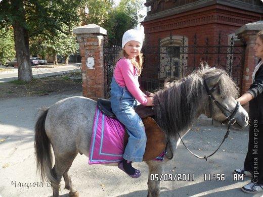 Моя сестра Карина ездила в Екатеринбург - зоопарк. Вот несколько животных.  фото 2