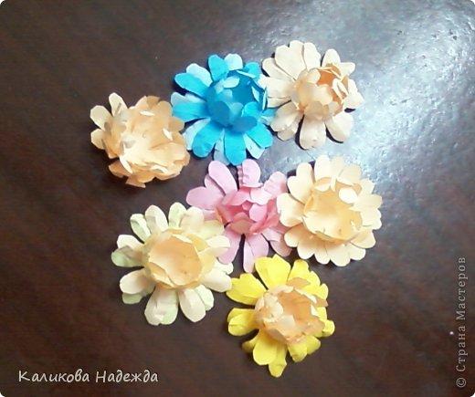 Учились делать объемные самодельные цветы, используя (за неимением дырокольных заготовок)шаблоны. Вот такие хризантемки делали из мокрой бумаги для акварели, предварительно окрасив ее в желаемый цвет. фото 5