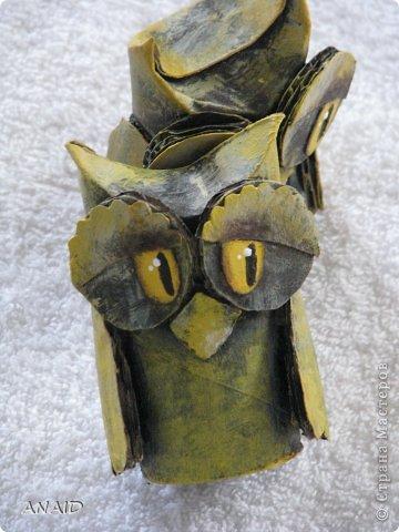 Сова-символ мудрости,оберегает от глупых помыслов и нерациональных денежных вложений. фото 13