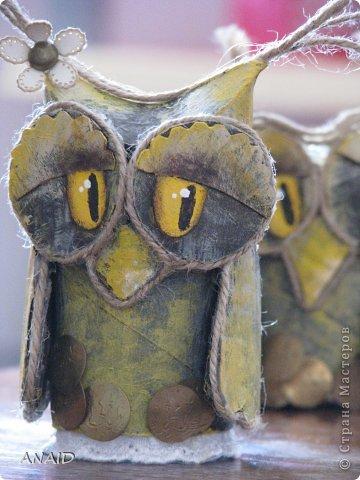 Сова-символ мудрости,оберегает от глупых помыслов и нерациональных денежных вложений. фото 1