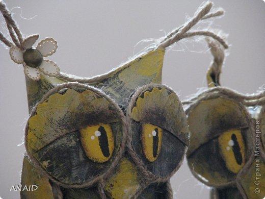 Сова-символ мудрости,оберегает от глупых помыслов и нерациональных денежных вложений. фото 17