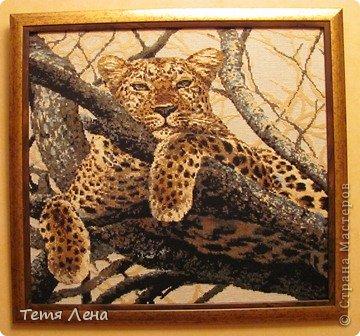 Леопард Канва Нитки