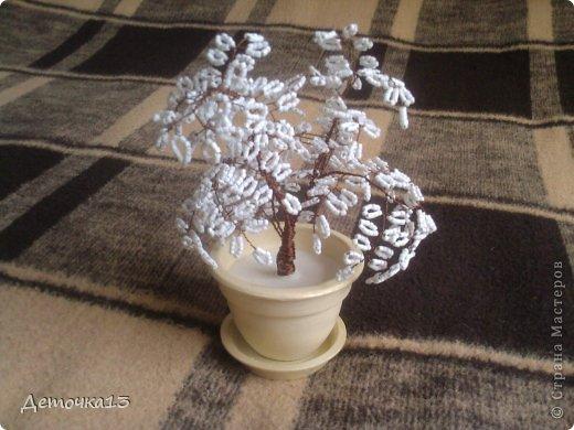 Бонсай топиарий Бисероплетение Мое первое дерево из бисера Бисер.
