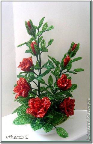 Поделка изделие Бисероплетение Роза кустовая Бисер фото 2.