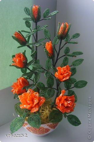 Поделка изделие Бисероплетение Роза кустовая Бисер фото 1.