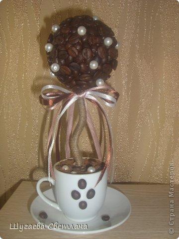 Топиарий с кофе своими руками мастер класс