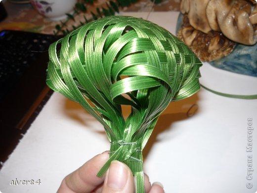 Листья из аспидистра своими руками мастер класс