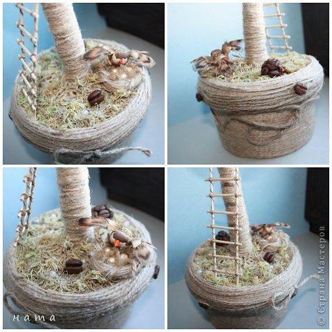 Здравствуйте, дорогие мои! У меня сегодня кофейное дерево и история... фото 3
