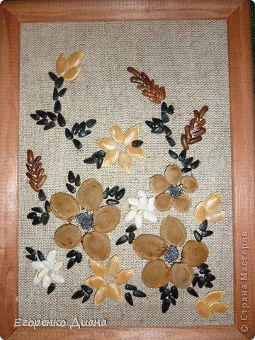 Картины из семян и крупы своими руками