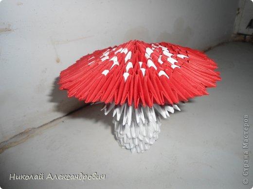 1.мухомор схема http://vrukodelii.com/gribyi-iz-moduley-origami/2.лебидь, схема на http...