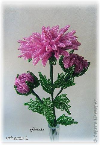 Бисероплетение - хризантемы-4 из бисера.