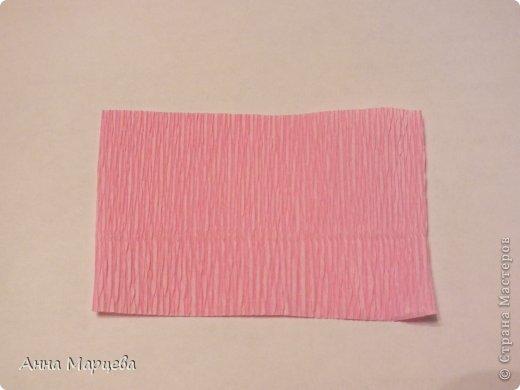 Мастер-класс Свит-дизайн Бумагопластика Обещанный МК но только по розе пока Бумага гофрированная Клей фото 2