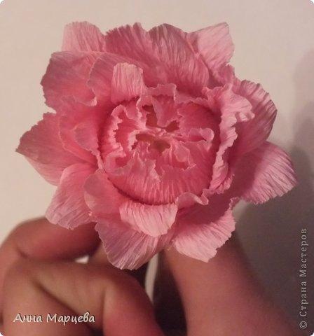 Мастер-класс Свит-дизайн Бумагопластика Обещанный МК но только по розе пока Бумага гофрированная Клей фото 17
