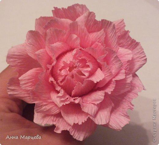 Мастер-класс Свит-дизайн Бумагопластика Обещанный МК но только по розе пока Бумага гофрированная Клей фото 19