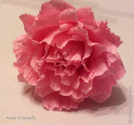 Мастер-класс Свит-дизайн Бумагопластика Обещанный МК но только по розе пока Бумага гофрированная Клей фото 1